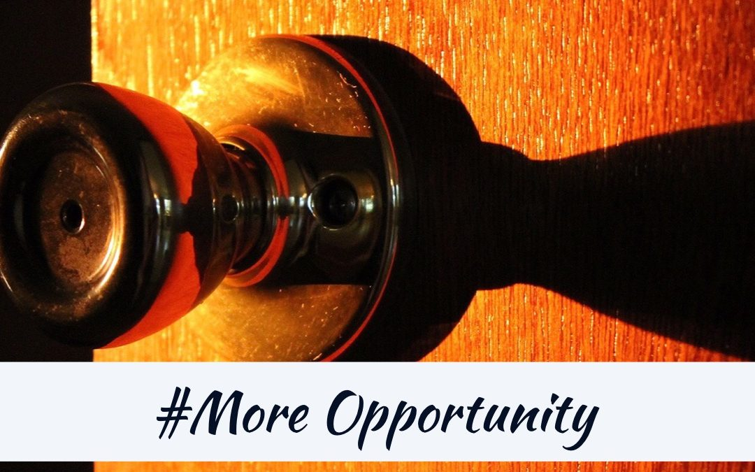 #More Opportunity – Realtor Series 2019